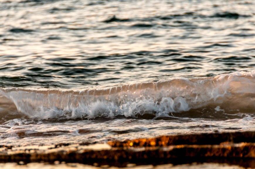 © Eva Larsson Södergren (Nikon D90)